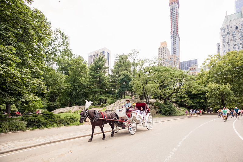 Central Park Wedding - Ronica & Hannah-16.jpg