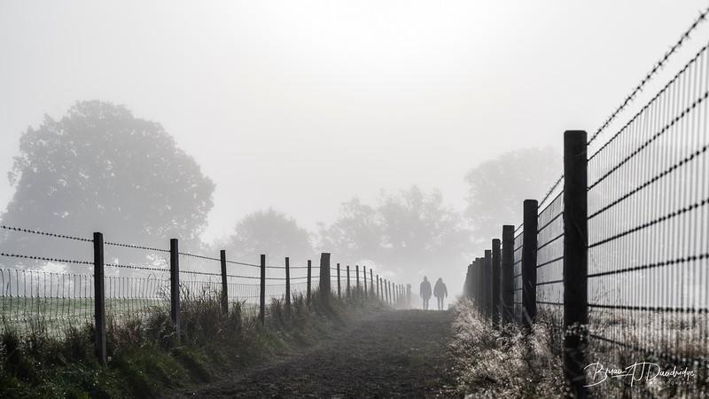 Hassocks in the mist-5423.jpg