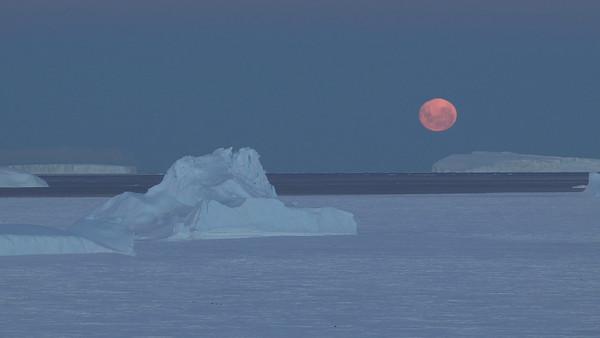 Video Antarctica