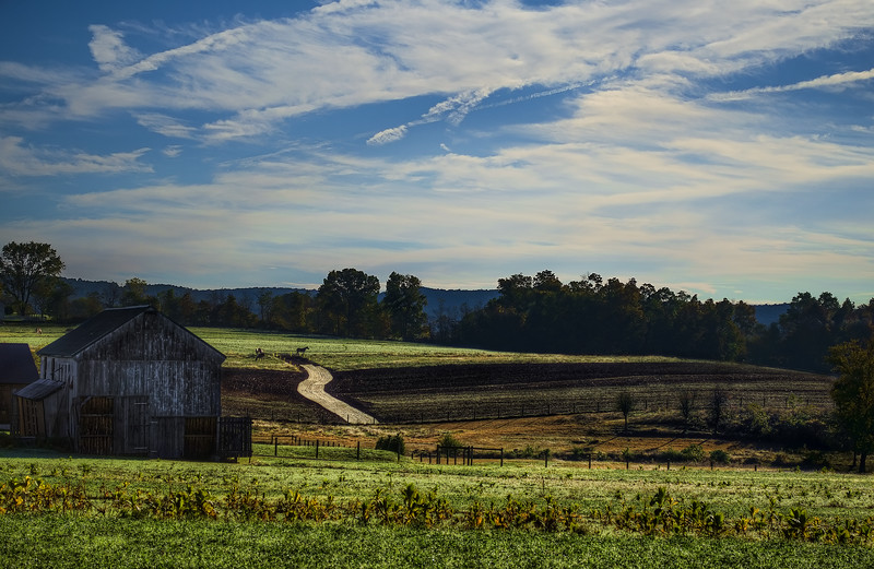 autumn2014 - tobacco barn near bowmansville(p).jpg
