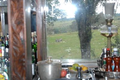 7-3-2008 Ngorongoro Crater Lodge