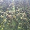 Honokohau ma<br /> (c) Kuulei Kanahele