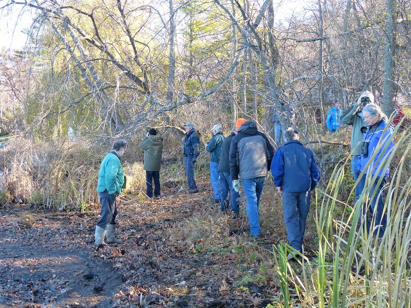 WBFN members looking for birds on Rice Lake