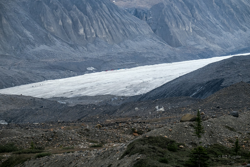 Columbia Icefields. Look for the busses and people.