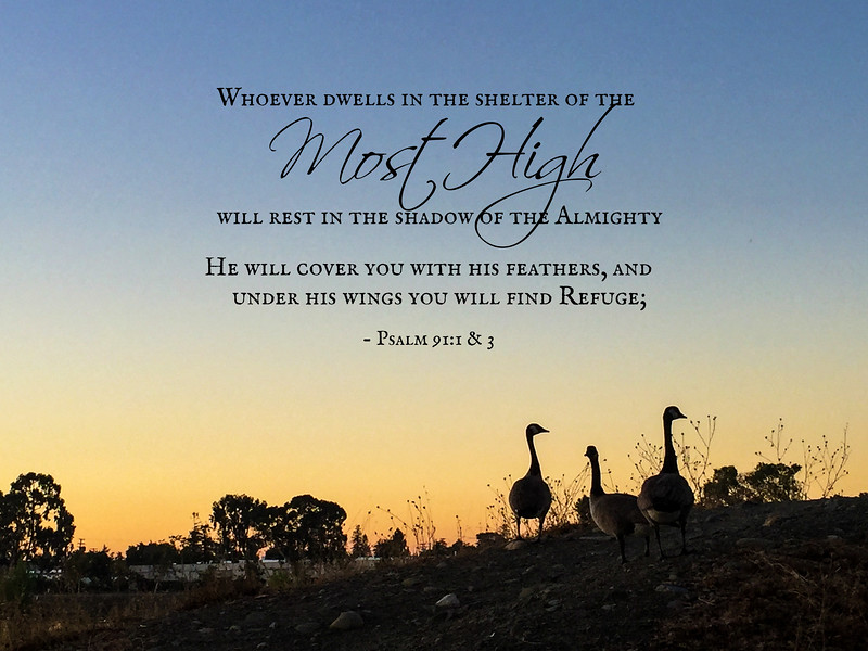 19_Psalm91-1-3_NJ_2017-10-26.jpg