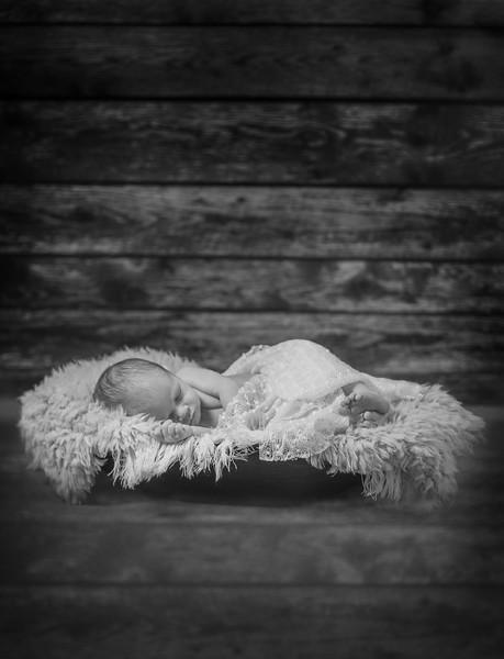 Newborn TR 0296