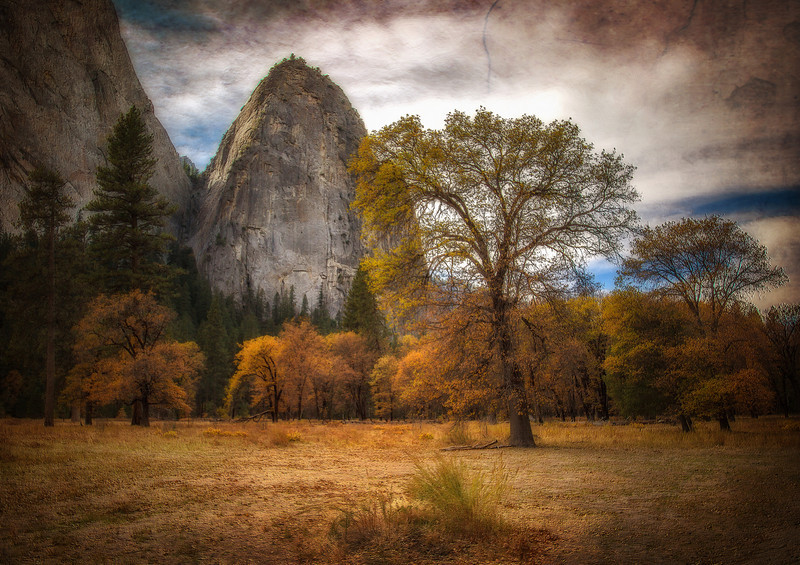 Golden Yosemite Valley.