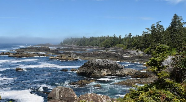 Vancouver Island Trail Running + Wellness Retreat May 2021