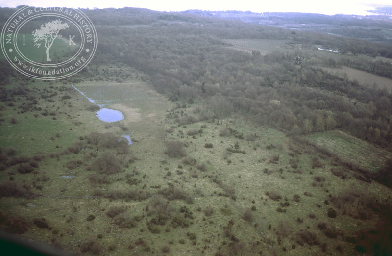 Svabesholm, botanical protected area (1986). | LH.0123