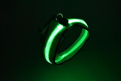 ball,batteries-blacklight-leash=collar