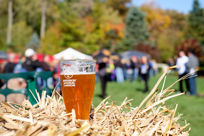 Anderson Gardens On Tap-2015