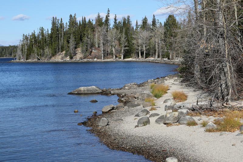 Jenny Lake Shore Line