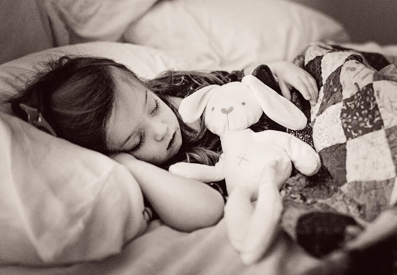 2016 Dec Toyzkit Stuffed Rabbit Toy-2665.jpg