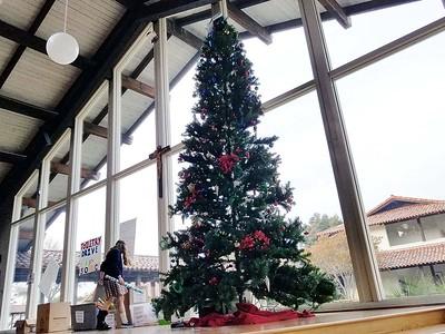Christmas at Catalina