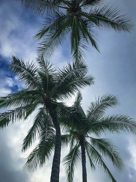 Hawaii-172.jpg
