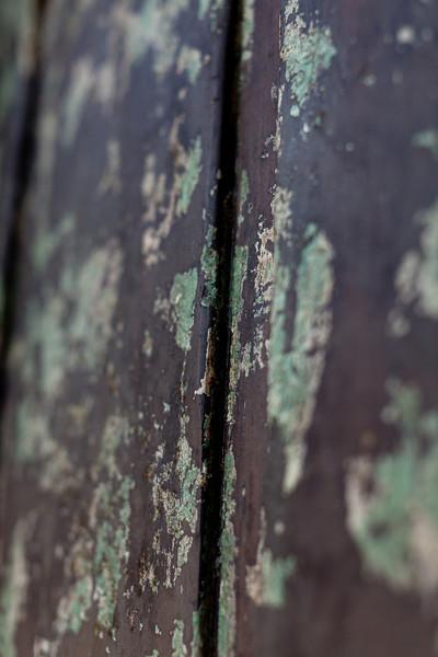 NGingold_050113DigLanscape_056.jpg
