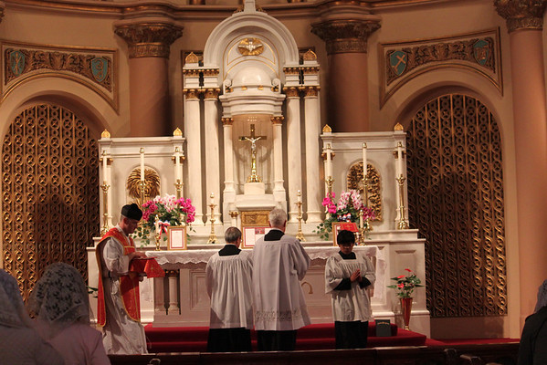 Feast of the Most Precious Blood: TLM at Star of the Sea