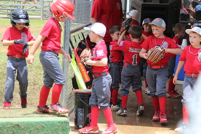 Shelbyville T-Ball District Champs among teams in weekend tourney action