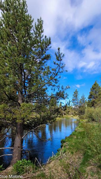 05-19-2021 La Pine State Park-26.jpg