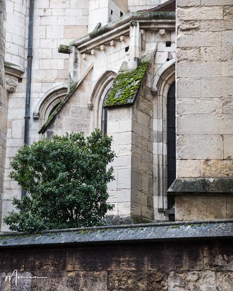 2019-10 - Burgundy Vacation-2873_edit.jpg
