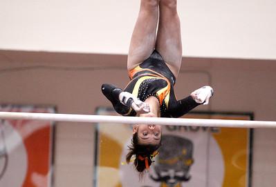 Girls State Gymnastics Finals