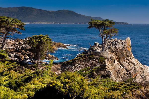 Monterey, 2008