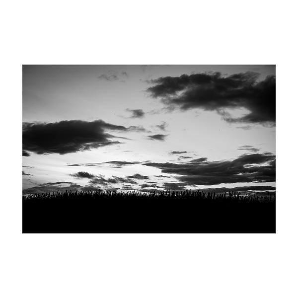 231_Sky_10x10.jpg