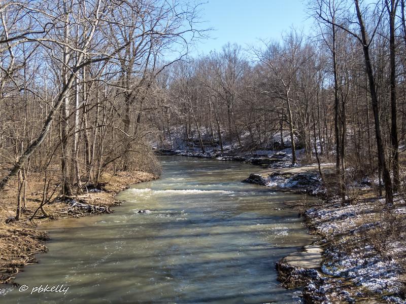Black River 030417-2.jpg