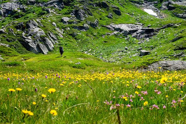 Gotthard bouldering