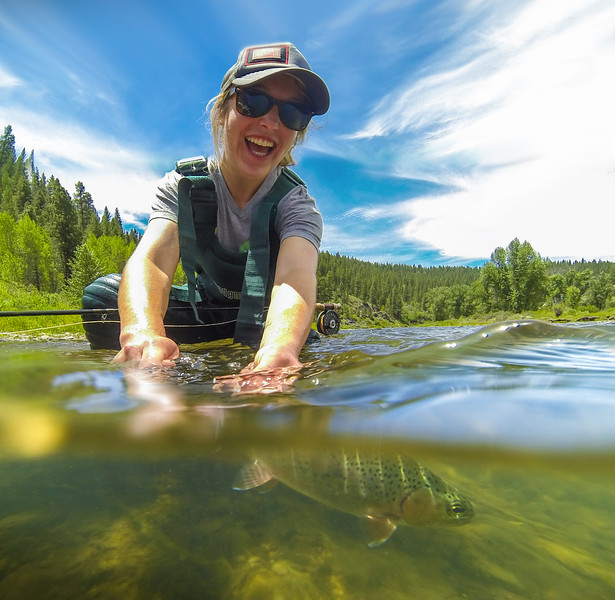 Fly fishing release rainbow trout on Truckee River