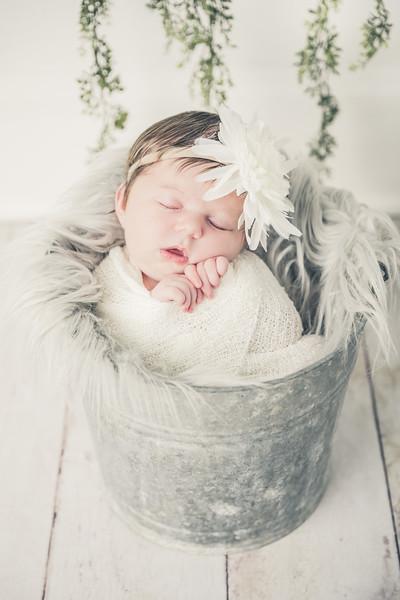 Rockford_newbornphotography_A_047.jpg