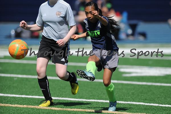 Albany SWAT Girls 14U Soccer