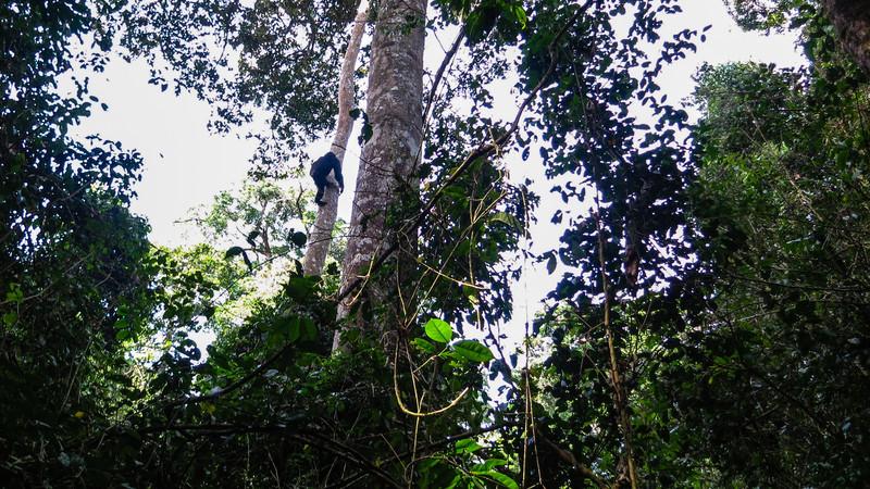 Uganda_GNorton_03-2013-574.jpg