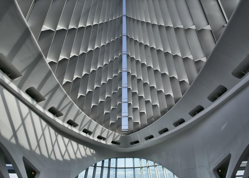 Z_CalatravaDec2018 006.jpg