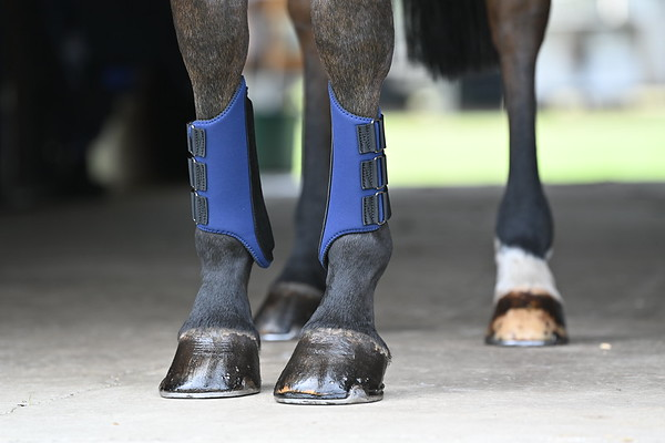 Galloping Boots