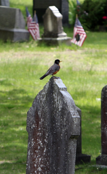 Memorial Day weekend at local cemeteries