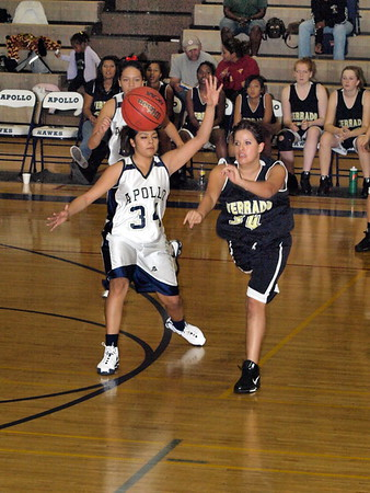 Basketball JV Lady Vipers vs. Apollo 12/4/2008