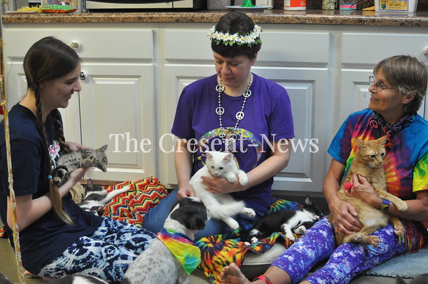 09-08-18 NEWS Catstock Event