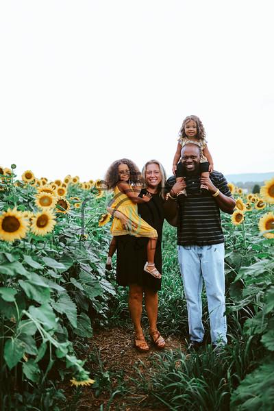 Sunflower Mini 2020