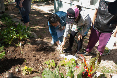 2013 Spring Garden Maintenance Workshop