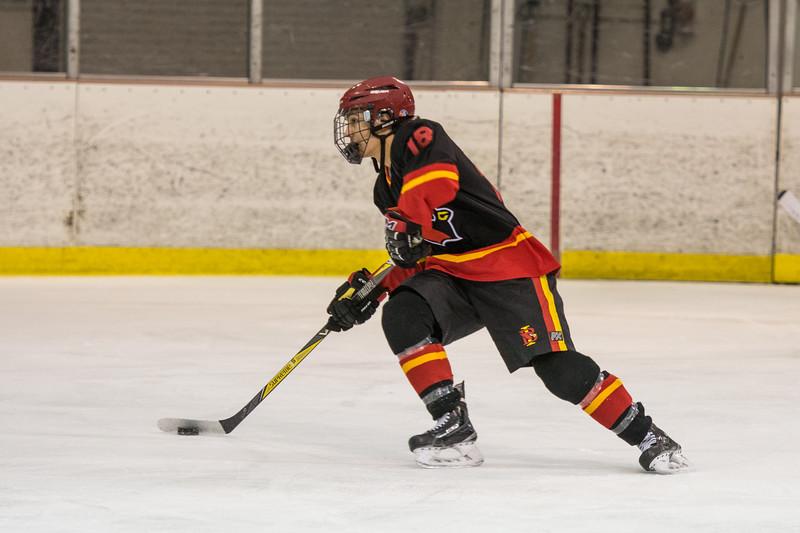 20180202 BI Hockey 134.jpg