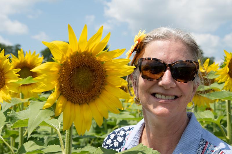 Sunflower Fields-17.jpg