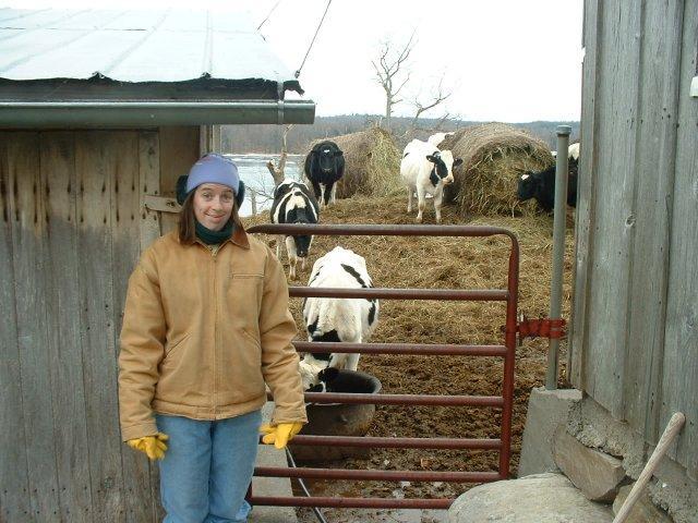 Ellen giving the heifers a drink