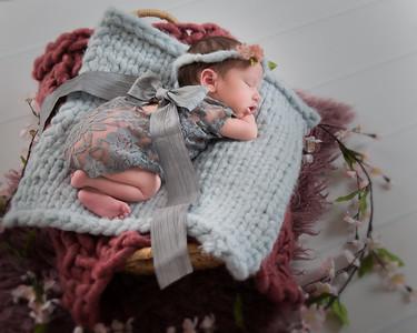 Shelley newborn