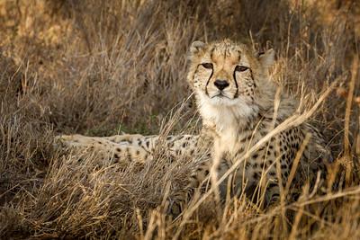 Kenya October 2011