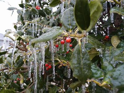 Ice, December 2016