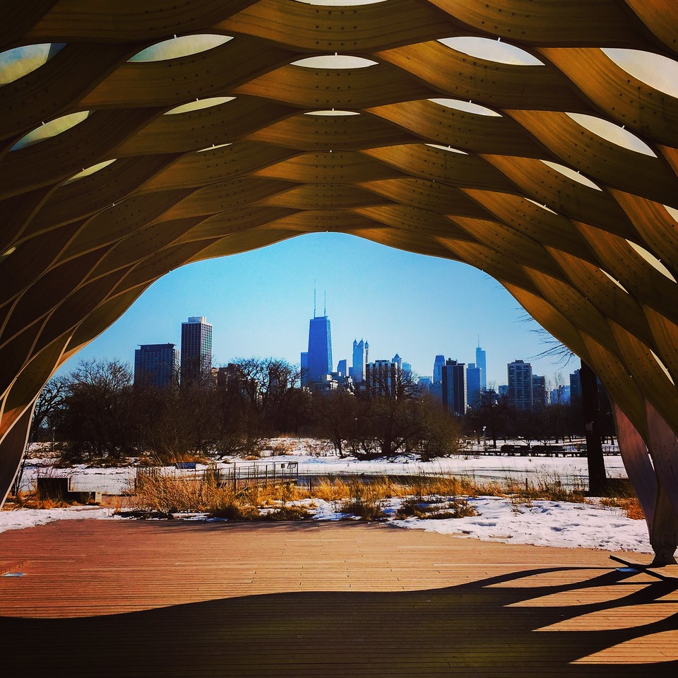 Downtown Chicago viewed through the Education Pavillion, Lincoln Park Nature Area.<br /> IMG_3354