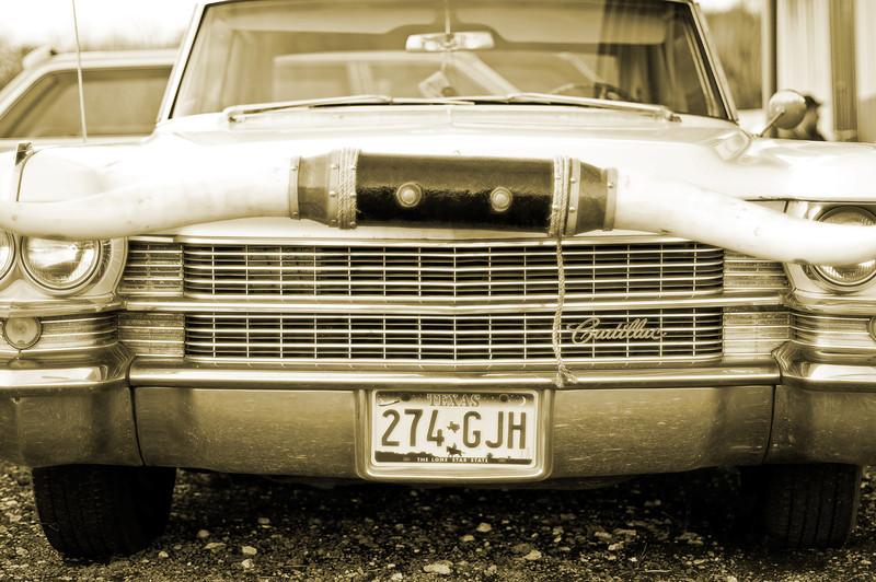 Cadillac Longhorns 05.jpg