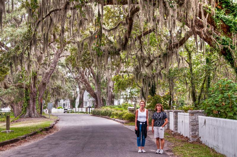 mossy-tree-women.jpg