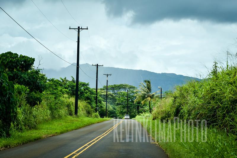 Kauai2017-126.jpg